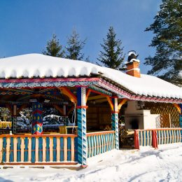 мандроги зима1