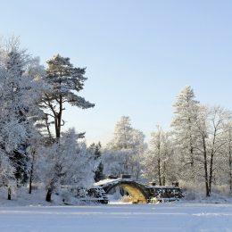 russian-photographer.ru Гатчинский Дворцовый парк зимой, Горбатый Мостик
